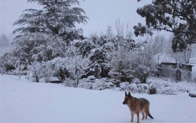 Snow turns parts of SA into winter wonderland