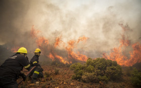 Residents urged to report suspected arson on Cape fires