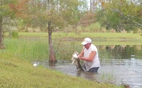 [WATCH] Man saving puppy from alligator's jaws goes viral