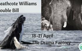 Whale Nation and Sacred Elephant