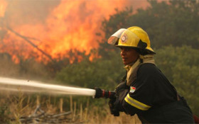 Cape fire services quell 61 vegetation fires in space of 12 hours