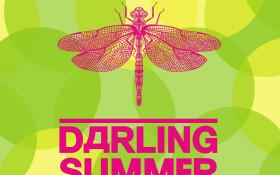 Darling Summer Beer Festival