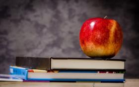 Whackhead Prank: High school Casanova caught kissing his teacher