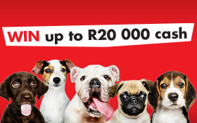 Crowning The Cape's No.1 Pet this Pet Insurance Awareness Month.