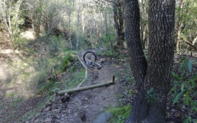 Cyclist injured by wire trap planted on local trail