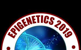 5th International Congress on Epigenetics & Chromatin