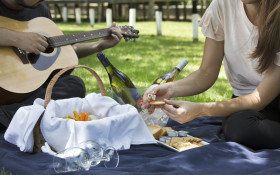 Backsberg's 10th Annual Picnic Concerts presented by Cape Talk