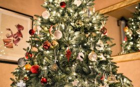 When is the right time to put up a christmas tree?