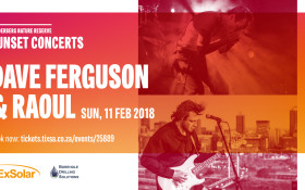 Dave Ferguson and Raoul: Helderberg Sunset Concerts