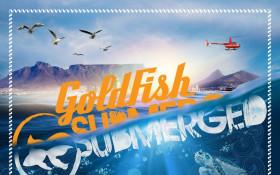 Shimmy beach club splashes into summer season with Goldfish Submerged