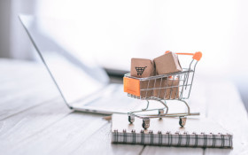 Woolies Dash same-day delivery service goes live with cold-chain technology