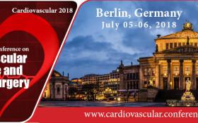 3rd International Conference on Cardiovascular Medicine and Cardiac Surgery