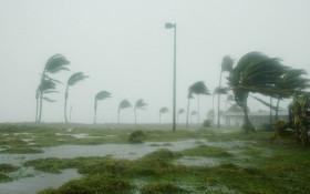 Cape Town on high alert after strong winds wreak havoc