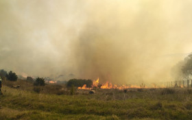 At least 500 hectares of land destroyed in Table Mountain fire: SANParks
