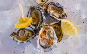 NEW ATTRACTIONS AND OLD FAVOURITES AT THE PICK N PAY KNYSNA OYSTER FESTIVAL