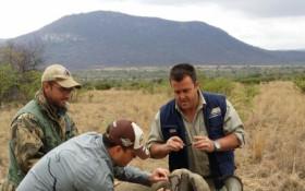 LeadSA: Helping the Rhino