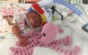 Crocheted octopuses 'soothe' premature babies to help boost their development