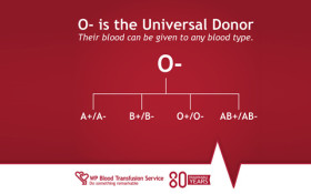 Tracey Lange chats to WP Blood Transfusion ahead of the festive season