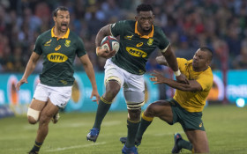 Kolisi: I want to represent & inspire all South Africans