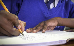Children who fall through the Basic Education cracks and how to help them