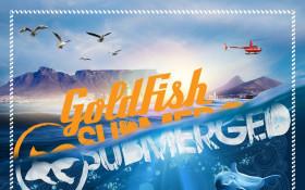 shimmy beach Club splashes into the summer season with Goldfish submerged