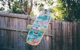 Make Hout Bay's dream of a skate park come true