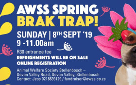 Feel Great Fitness Guide: AWSS Spring Brak Trap