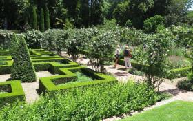 Stellenberg Open Gardens Charity event