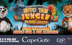 Into The Jungle Interactive Play Zone