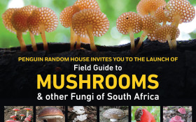 Book launch:Field guide to Mushrooms & otherFungi