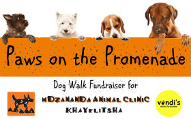 Paws on the Promenade Dog Walk Fundraiser