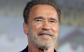 Whackhead's Prank: Arnold Schwarzenegger soundboard