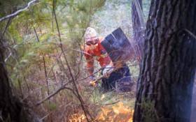Knysna Fire Report: Telltale signs of human activity at origin of fire