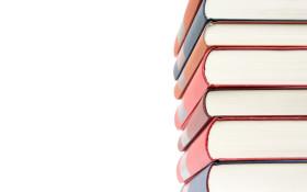 Teacher creates initiative to help Alex kids read from home