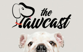 Adopt or shop? #ThePawcast's Lauren Palmer confronts the thorny issue