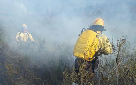 WC fire crews still battling Overstrand blaze