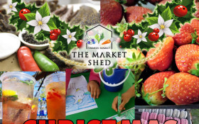 The Market Shed - Christmas Market