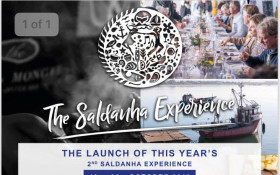 The Saldanha Experience