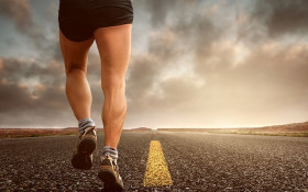 Feel Great Fitness Guide: Stellenbosch Farm Run