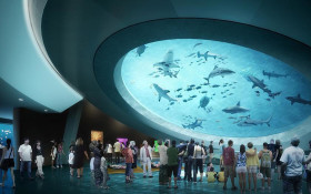 Proudly Mzantsi company chosen to design for Miami science museum