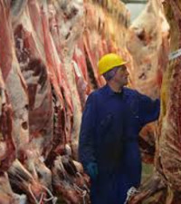 Masterclass: Beef up your knowledge of meat