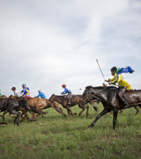 SA Adventurer Barry Armitage wins world's toughest endurance horse race