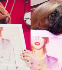 Doug the pug recreates Taylor Swift's Instagram pics