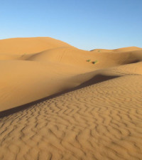 Local adventurer completes 251 km sand marathon in the Sahara for a good cause