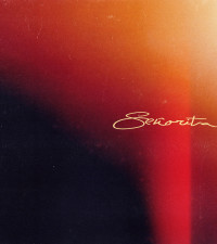 Shawn Mendes and Camila Cabello release beautiful joint single, Señorita