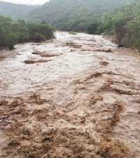 16 people killed in inclement weather in KZN as province braces for 'mega-storm'