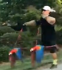 [WATCH] Man taking parrots out for a walk has social media talking