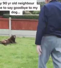 [WATCH] 90-year-old man saying goodbye to a dying dog is enough to make you cry