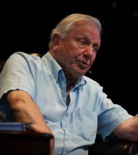 Newly identified African fish species named after Sir David Attenborough