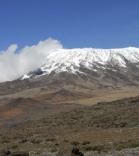 Donate a dollar to plant a tree on Kilimanjaro